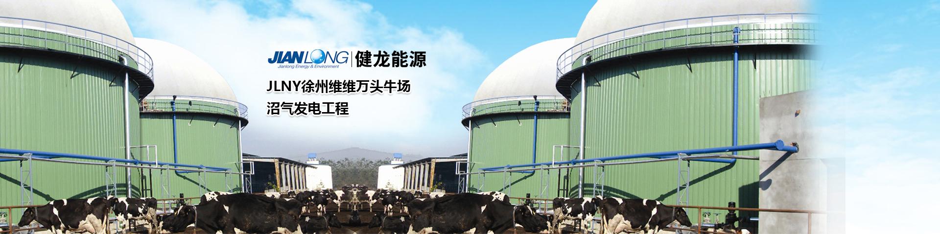 安阳健龙能源环保工程有限公司