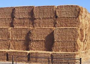 农作物秸秆资源利用